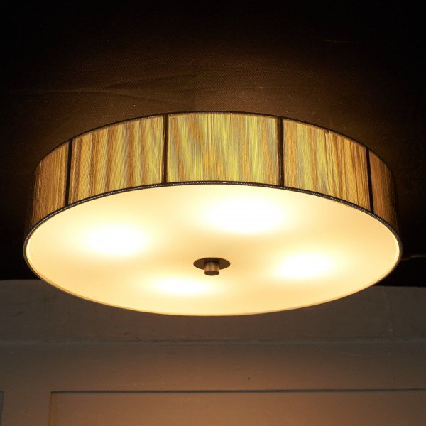 遠藤照明 ENDO シーリングライト ERG5260S