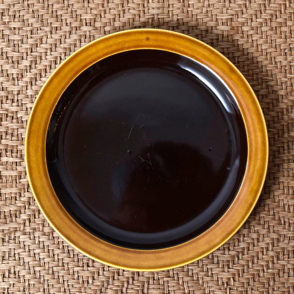 ホーンジー Hornsea Pottery BRONTE プレート 17cm